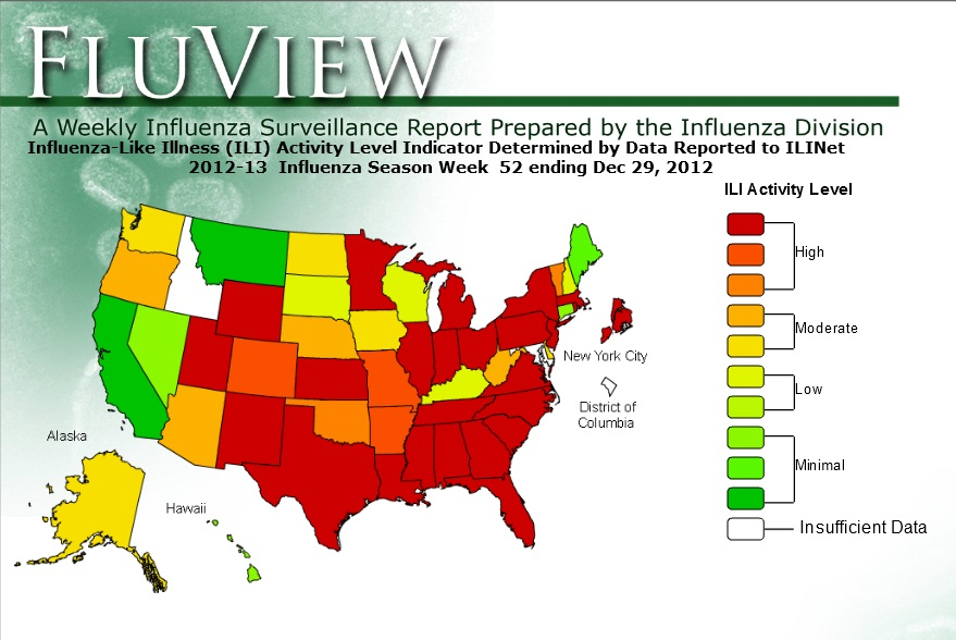 Influenza Symptoms 2013 The Flu Diagram, The, ...