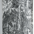 Courtesy of Molly Reynolds, Schmucker Art Gallery Els Geelen: Roots (Project Space) September 10 – October 15th, 2014 ARTIST'S TALK: September 10,4pm Els Geelen's drawings, prints and paintings are...