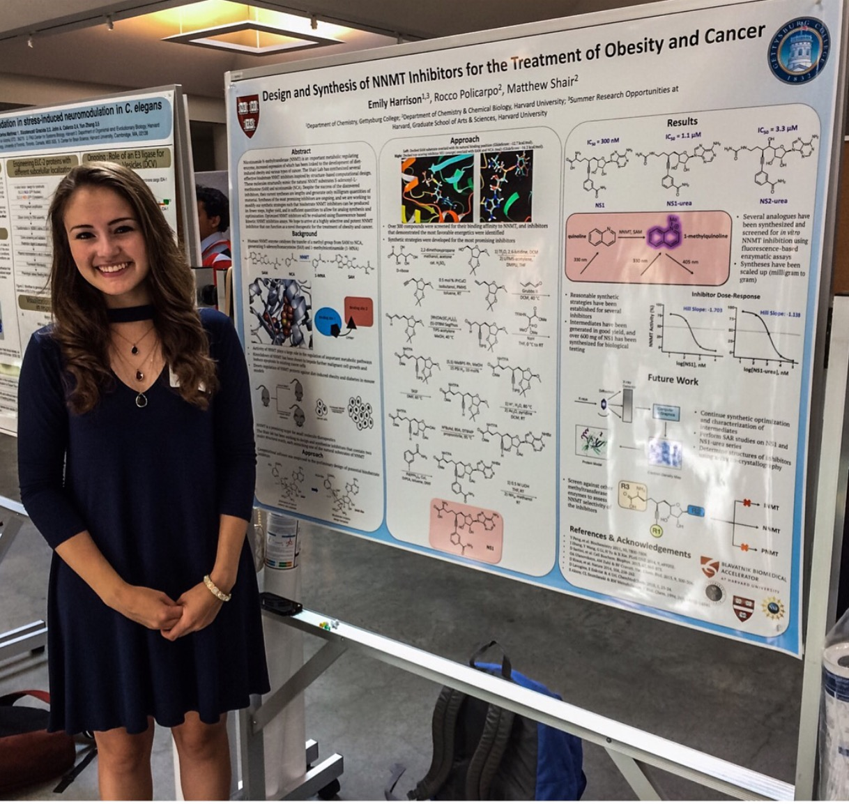 Emily Harrison engaged with her passion for organic chemistry while conducting research on the Gettysburg College campus this summer