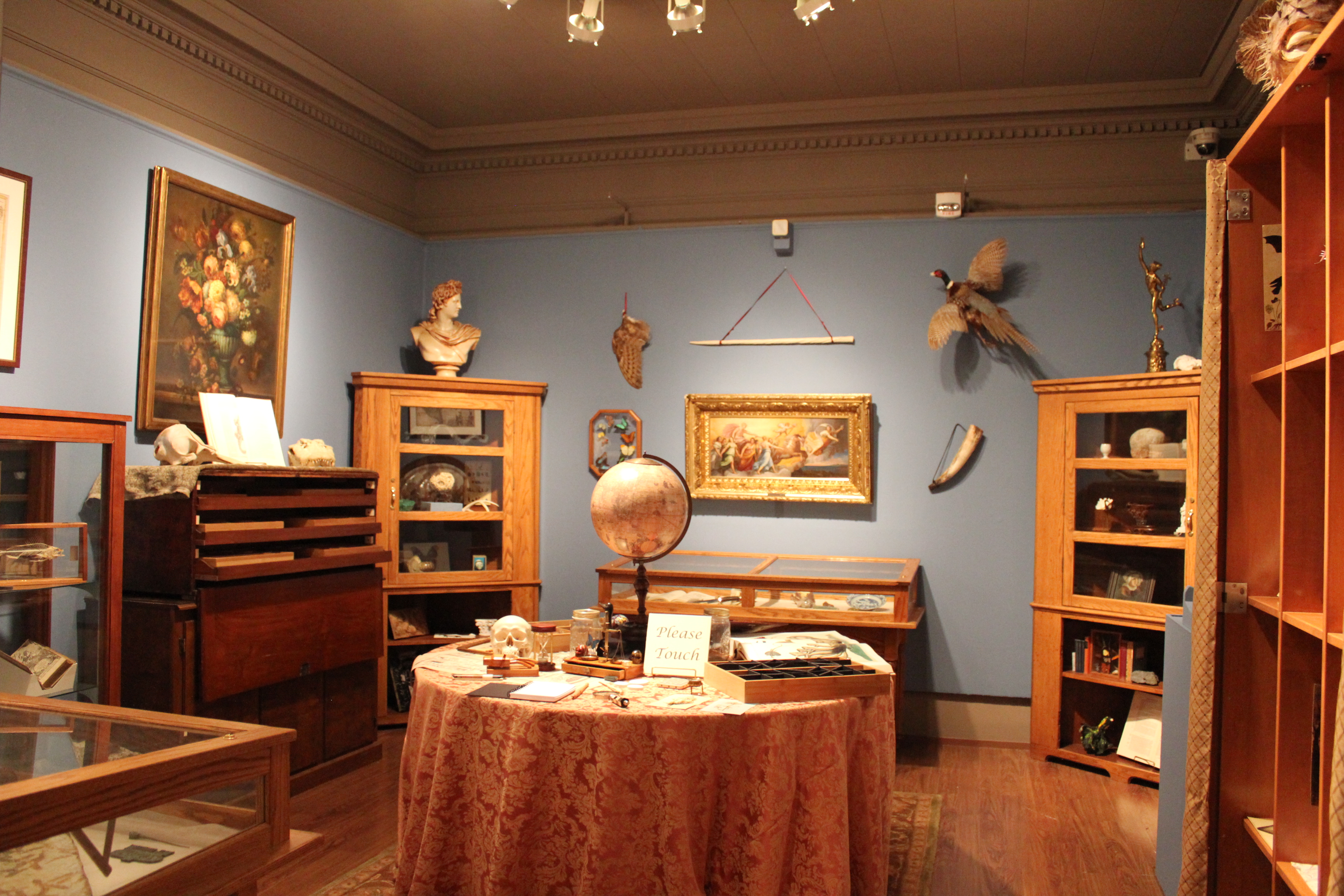 The Wonder Room exhibit (Photo courtesy of project website)