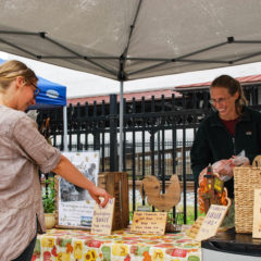 Downtown Farmers' Markets Offer Fall Favorites