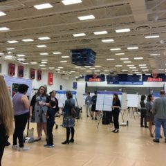 Undergraduate Research on Display at Celebration 2019