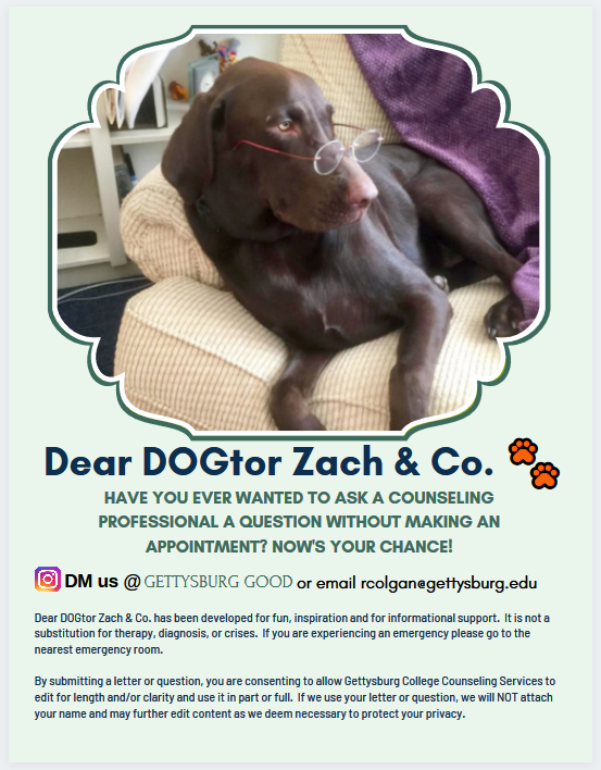 Dear Dogtor Zach is a new initiative by Counseling Services to keep students in touch with counselors at Gettysburg College.