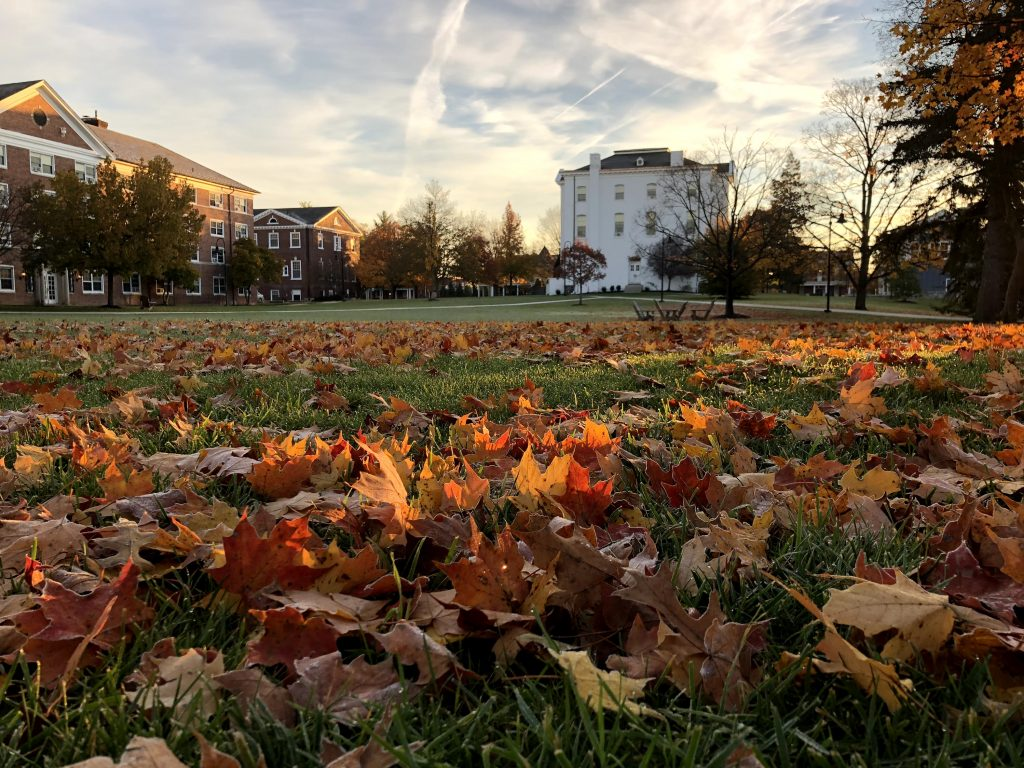 Fall leaves on Stevens Lawn (Photo by Gettysburg College)