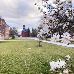 Gettysburg Sets Campus-Wide Temporary Indoor Mask Mandate