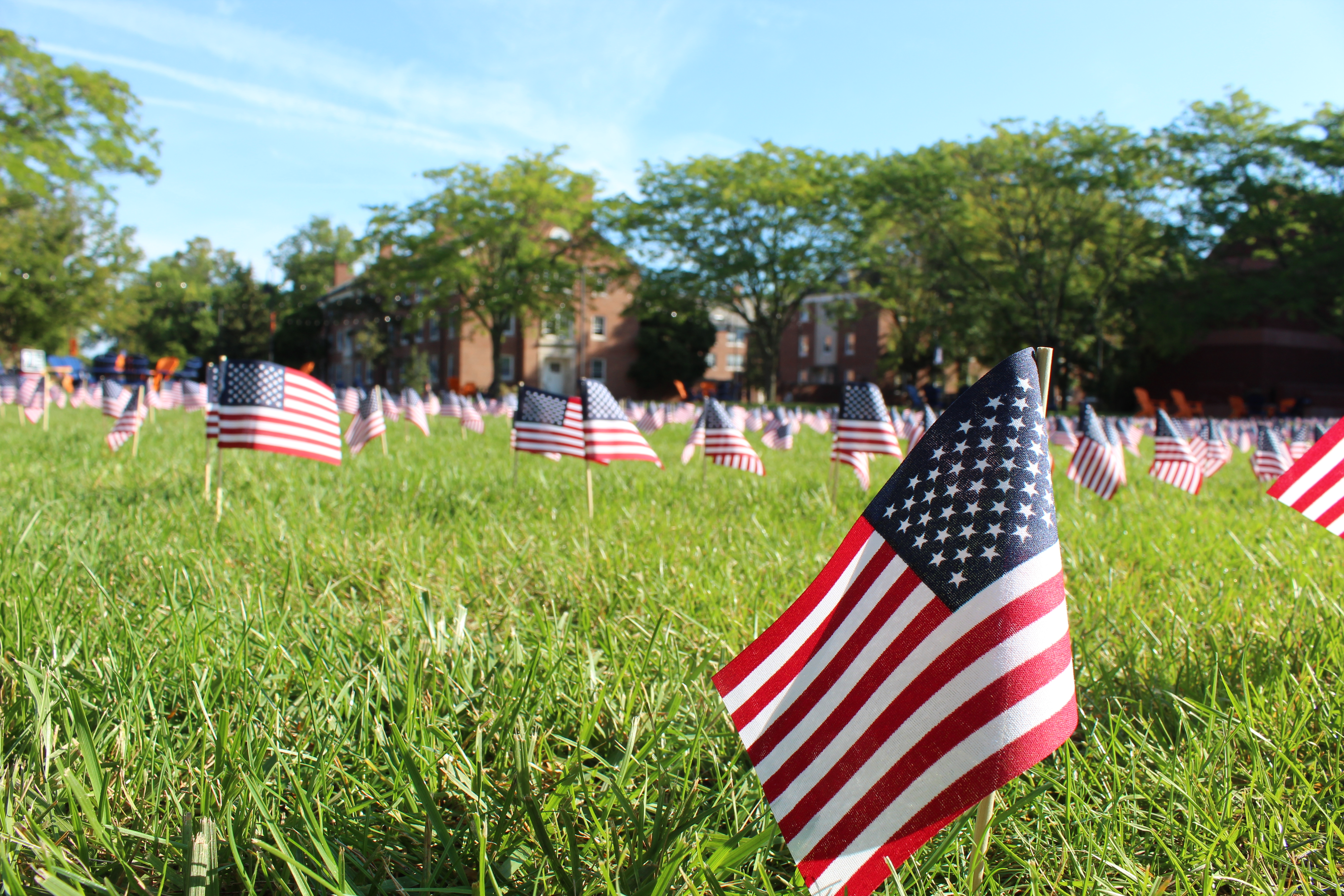American flags on Stine Lake for 9/11 Memorial (Photo by Maggie Galloway)