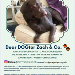 Dear Dogtor Zach: Getting Good Sleep