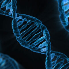 Researchers find most cancers caused by genetic error